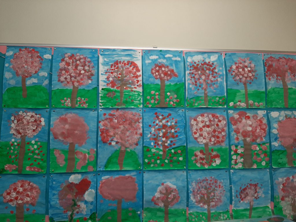 Cherry Blossoms in 2nd Class