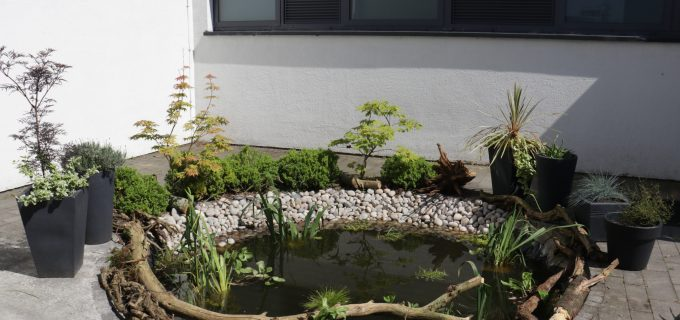 The children's pond, revitalised by Martin and Karin Duffy